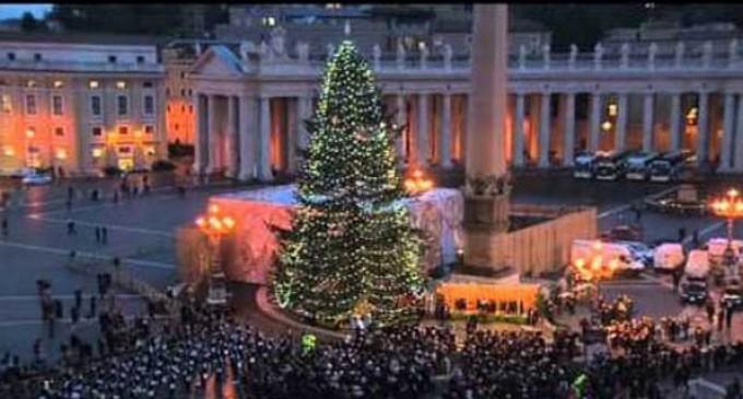 El Nacimiento y el árbol de Navidad son signos de luz y de esperanza