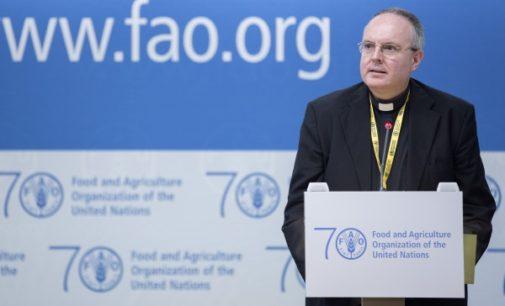 FAO: Medidas para salvar a los pescadores explotados y maltratados
