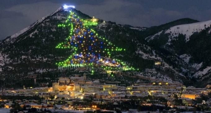 El Papa enciende el árbol de Navidad más alto del mundo
