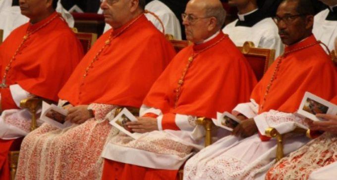 El cardenal español Ricardo Blázquez, miembro de la congregación para el Culto Divino y la Disciplina de los Sacramentos