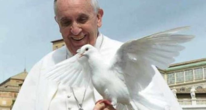 El Papa hace público el mensaje para la Jornada Mundial de la Paz