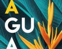 Libros: «Agua» de Isabel Gómez Acebo, publicdo por Editorial San Pablo