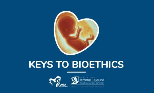 Bioética: El Vaticano lanza una aplicación para ayudar a los jóvenes