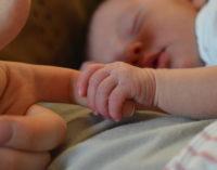 Bioética: El aborto, principal causa de muerte de seres humanos en el mundo
