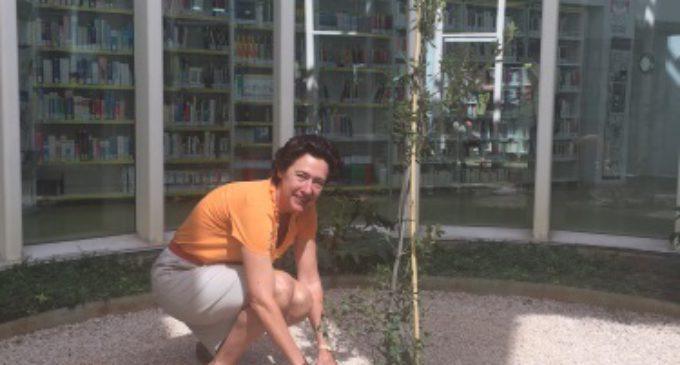 La Comunidad rinde homenaje a Cervantes plantando una encina en una biblioteca de Vallecas