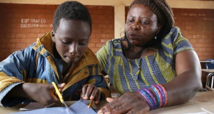 «Convierten las escuelas de madera en leña»