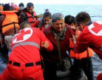 La Cruz Roja encarna el evangelio del Buen Samaritano, dice el Papa
