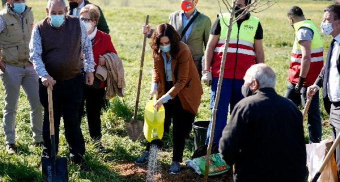 Díaz Ayuso participa en el inicio de reforestación del Parque de la Alhóndiga en Getafe para paliar los efectos causados por Filomena
