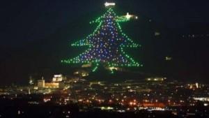 El+árbol+de+navidad+más+grande+del+mundo+