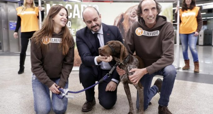 La Comunidad apoya a El Refugio en su labor para promocionar la adopción de animales abandonados