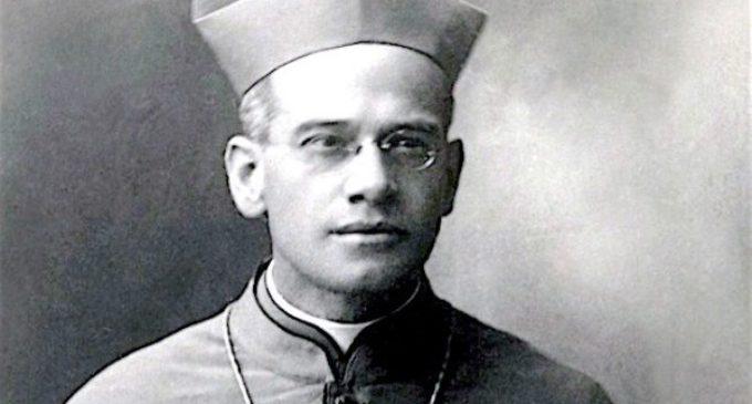 Francisco autoriza y se abre el camino de beatificación para un peruano, un mexicano, una española y un pediatra español