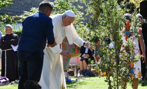 El nuevo libro del Papa marca el tono para el documento final del Sínodo