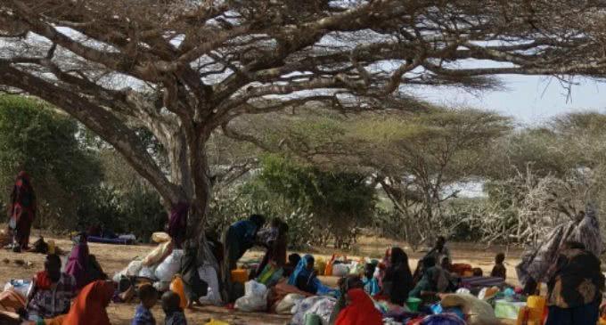 Manos Unidas: El derecho a la alimentación es una quimera para millones de personas en África