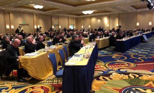 Estados Unidos: Los obispos se forman para atender a víctimas de abusos sexuales