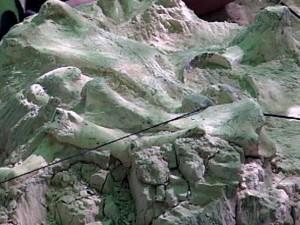 Fósil de Jirafa 3