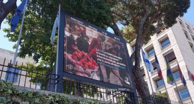 Observador del Vaticano en la FAO: eliminar el hambre exige un esfuerzo de todos los sectores