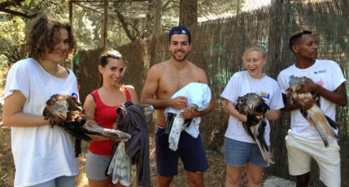 Jóvenes de once países llegan a la Comunidad de Madrid para trabajar en favor de la biodiversidad