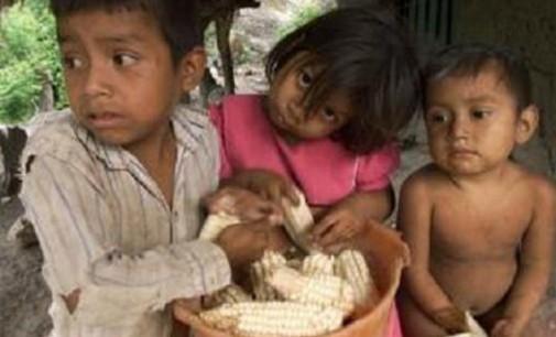 Manos Unidas reclama Seguridad Alimentaria para lograr una vida saludable, especialmente de los más vulnerables