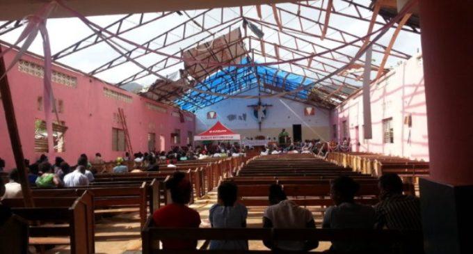 Haití no pide alimentos, pide semillas para poder plantar