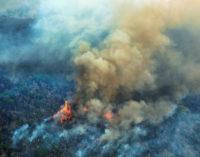 """Consejo Episcopal Latinoamericano: Los incendios del Amazonas, una tragedia de """"proporciones planetarias"""""""