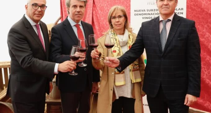 La Comunidad amplía el territorio de su D.O. Vinos de Madrid con la subzona de El Molar