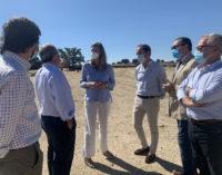 La Comunidad destinará 4,5 millones en ayudas para apoyar a las ganaderías madrileñas de toro de lidia