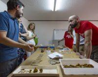 La Comunidad de Madrid fomenta la conservación del Patrimonio entre los jóvenes
