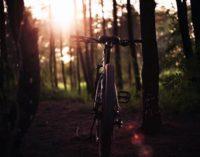 La Comunidad de Madrid invita a conocer las mejores rutas de cicloturismo sin salir de casa