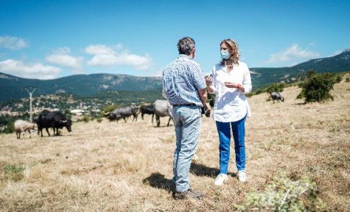 La Comunidad de Madrid pide al Gobierno central que no ignore las necesidades del campo y el sector ganadero