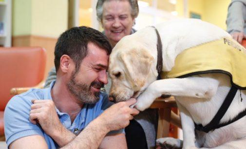 La Comunidad lleva a cabo terapias asistidas con animales para mayores dependientes