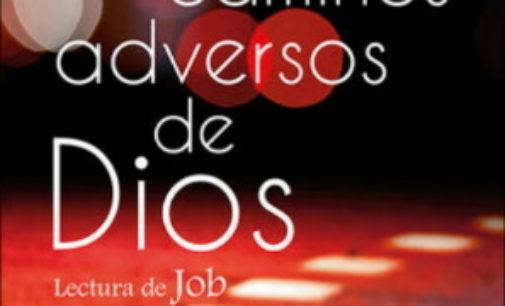 Libros: «Los caminos adversos de Dios», lectura de Job, de Xabier Picaza Ibarrondo