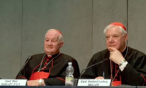 El Vaticano presenta el documento Iuvenescit Ecclesia sobre dones jerárquicos y carismas