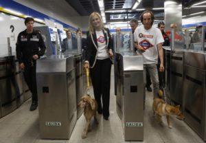 Los perros pueden viajar en metro 4
