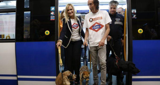Los perros pueden viajar en el Metro de Madrid desde el miércoles 6 de julio