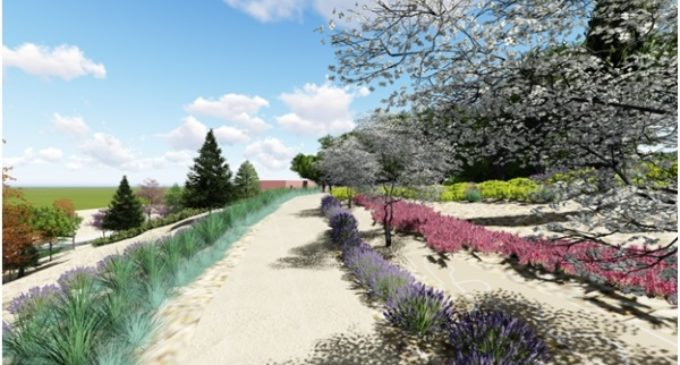 Casi 4.000 metros cuadros de zonas arbustivas y césped embellecerán el Parque de la Granja del Conde