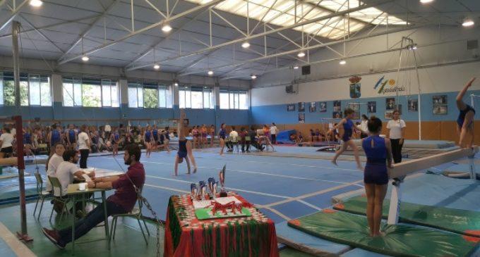 Majadahonda: éxito del Festival de la Escuela Municipal de Gimnasia