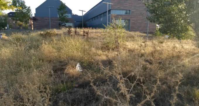 A propuesta de IU ySomos, el ayuntamiento reclamará a la Comunidad la limpieza del entorno del Centro de Salud de Valle de la Oliva