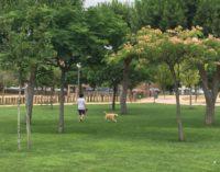 Majadahonda El Ayuntamiento recuerda sus obligaciones a los propietarios de mascotas