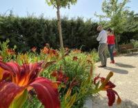 Majadahonda invierte medio millón de euros más en el mantenimiento de sus zonas verdes