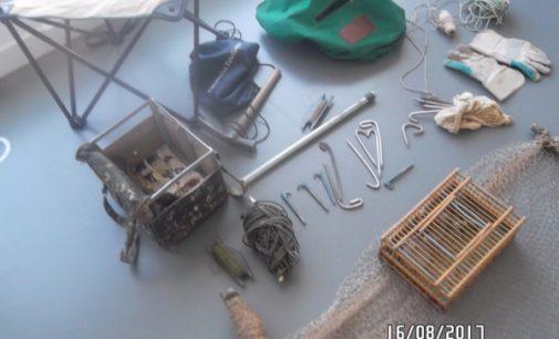 Majadahonda: Decomiso de fringílidos y artes