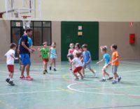 Majadahonda: Más de setecientos niños disfrutarán de las Colonias Infantiles y Deportivas de verano en instalaciones municipales