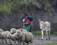Manos Unidas denuncia: ser indígena es sinónimo de explotación y discriminación