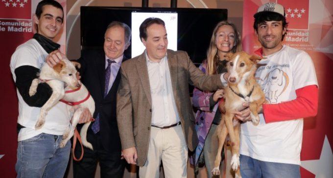 La adopción de animales como alternativa a la compra de mascotas, promocionada por la Comunidad de Madrid