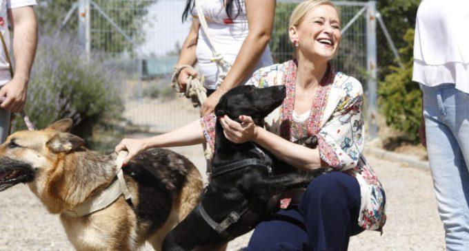 Cifuentes anima a la adopción de mascotas y a una tenencia responsable de los animales de compañía