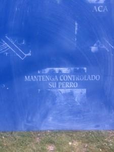 Monte del Pilar 2