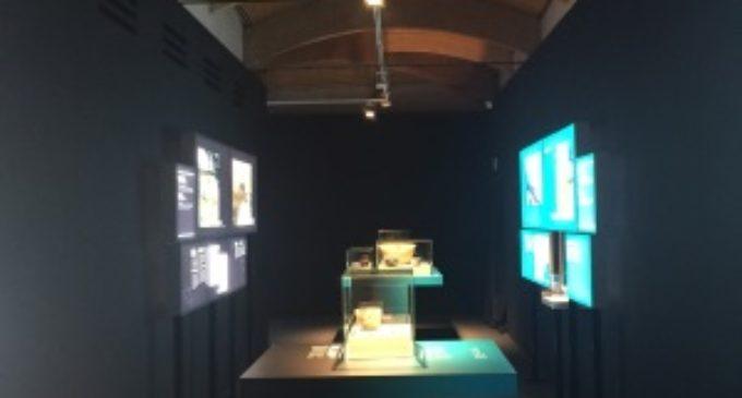 La prehistoria de Menorca aterriza en el Museo Arqueológico Regional
