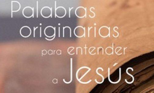 Libros: Palabras originarias para entender a Jesús de Xabier Picaza Ibarrondo y Vicente Haya