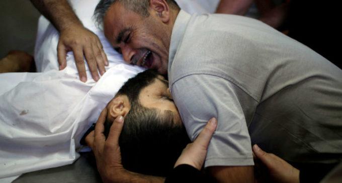 Ibrahim Faltas, responsable de las relaciones con Israel y Palestina de la Custodia franciscana: «Nunca había visto tanta ira en Tierra Santa»