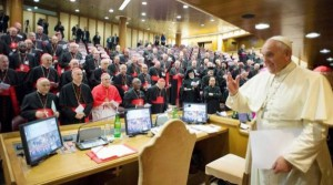 Papa 12. Sínodo