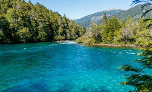 Plan Estratégico de Bosques de la ONU: Enfoque social y ecológico